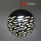 Lustre en Fer Forgé Noir Vintage Boule Noire Creux Lampe Suspendue en métal...