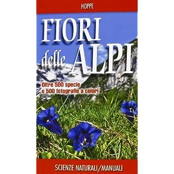 Fiori Delle Alpi