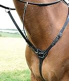 Condados Salisbury 3 punto petos Negro negro Talla:Pony