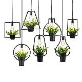 TIANLIANG04 kronleuchter Bügeleisen Kunst einzelner kleiner Kronleuchter hängen Blumentöpfe Pflanzen D Mittagessen)