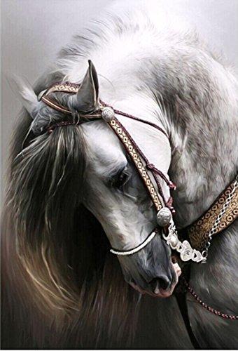 cocohe 5D DIY Kristalle Perlen Full Diamond Pianting piture Strass von Nummer Kits Pferd Room Decor (30x 35) cm/(11,8x 13,7) Zoll
