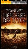 Graues Land 2 - Die Schreie der Toten: Horror-Thriller
