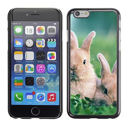 Graphic4You Niedlich Niedlich Kaninchen Hase Tier Design Harte Hülle Case Tasche Schutzhülle für Apple iPhone 6 / 6S Design #1