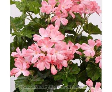 Geranien Kunstblume, mit UV Schutz auf den Blättern, 116 rosa Blüten, Höhe ca. 40cm – Kunsblumen künstliche Blumen Kunstpflanzen künstliche Pflanzen Blumen
