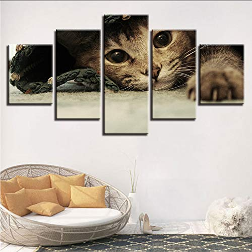 Wuwenw Animal Pictures Hd Printing On Canvas 5 Pieces Cute Cats Paintings Decor Home Living Room Or Bedroom Wall Art Framework Modular,8 X 14/18/22Inch,With Frame