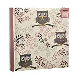 Best Next Photo Albums - Arpan Owl design Photo Album Slip In Case Review