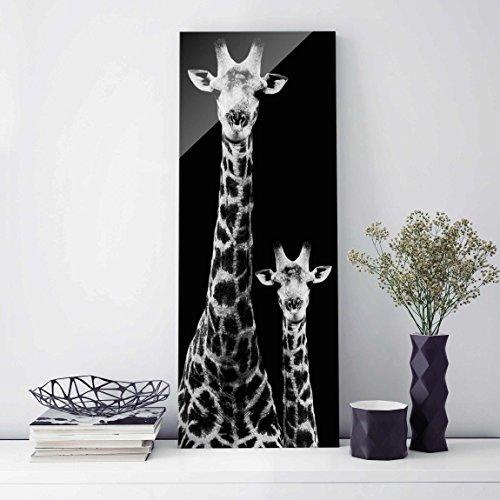 Druck auf Glas–Giraffe Duo schwarz-weiss–Panel   Druck auf Glas Glas Print Glas Bild Wand Wandbild Glas Bild Wand Art Glas Wandbild Glas-Druck Wandbild, Dimension HxB: 80cm x 30cm (Wand Art-glas-panel,)