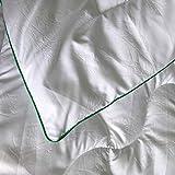 Bergmann Bettdecke Bambusmotiven für Allergiker, Kinder und Erwachsene, 100% Microfaser Decke, Steppdecke waschbar bis 95°, Öko Tex Schlafdecke - Weiche Steppbettdecke 135 x 200 cm