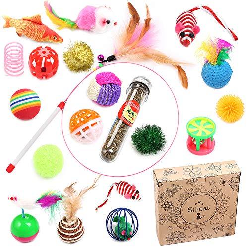 Queta Katzenspielzeug Set, 20 Stück Katzen Spielzeug Variety Pack für Kitty (Geschenkbox)