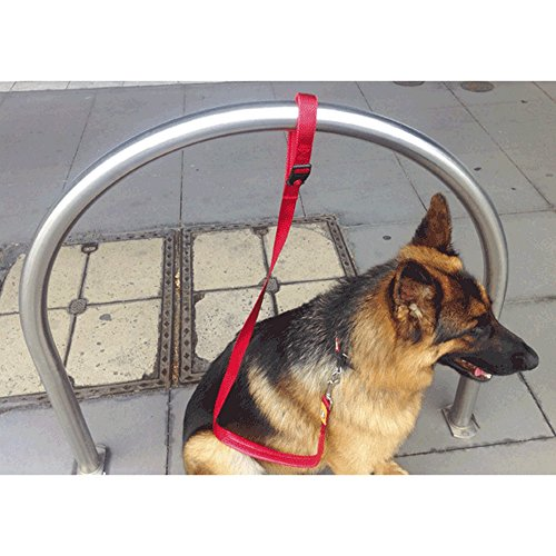canny-connect-dog-training-lead-25mm-x-120cm-red