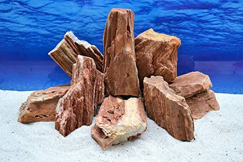 Pro Stein (Pro Stein Aquarium Deko Versteinertes Holz rot braun Natursteine 2-3 Kg Felsen Nr.52 Pagode Dekoration Aquascaping)