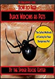 How to Keep Black Widows as Pets: The Safest Methods of Caring for Your Dangerous Pet (Arachnipets Spider Pet Care Guides Book 1)