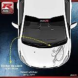 ADNAuto 78007 1 Sticker Capot pour Peugeot 206 207 et 208
