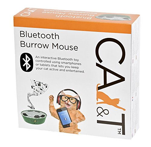 CA&T Bluetooth Dancing to Music Burrow Mouse 2