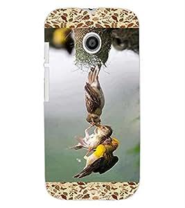 ColourCraft Lovely Birds Design Back Case Cover for MOTOROLA MOTO E