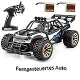 YAOJU Elektro Offroad Ferngesteuertes Auto,1:16 Skala 2WD RC Auto Off Road Buggy 2.4 Ghz Radio gesteuertes Auto für Kinder Erwachsene im Drinnen und draußen