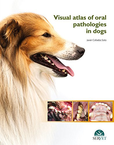 Visual atlas of oral pathologies in dogs