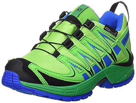 Salomon Xa Pro 3d Cswp J, Chaussures Multisports de Plein Air Mixte Enfant, Vert (Tonic Green/Athletic Green X/Union), 37