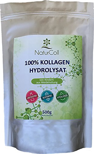 Kollagen Pulver aus Weidehaltung • 100% Kollagen Hydrolysat • 100% Protein • Collagen Powder Typ 1 und 2 • Paleo, Atkins, Keto und Low Carb Diät • 500g • Hergestellt in Deutschland (Paleo Diät-protein-pulver)