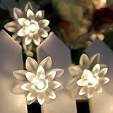 JnDee Blumen LED-Lichterkette,USB, 20 LEDs, Warm-Weiß, doppelte Schicht, funktioniert mit jedem USB-Port an PC, Laptop, Mac, Handy, perfekt für Weihnachten, Hochzeit, 3,5m