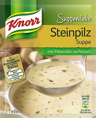 Knorr Suppenliebe Steinpilz Suppe, 10 x 3 Teller (10 x 750 ml)