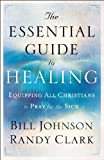 Image de The Essential Guide to Healing
