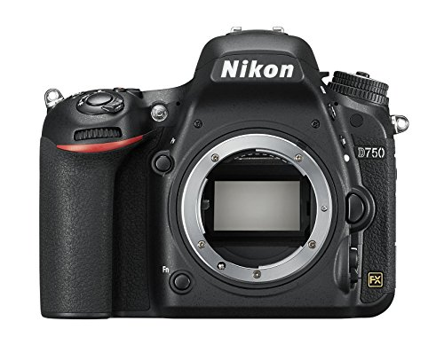 Nikon D750 - Cámara réflex digital de 24.3 Mp (pantalla 3.2', vídeo Full HD), color negro - Solo cuerpo