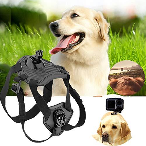 eliaSan Toy Dog Fetch Harness Brustgurt Gurthalterung Für DJI OSMO Action Mount Harness Verstellbarer Brustgurt Gurthalterung Fetch -
