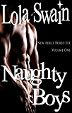 Naughty Boys New Adult Boxed Set: Four Book Bundle