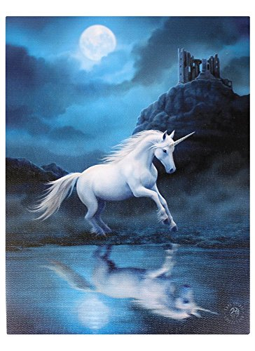 Anne-Stokes-Moonlight-Einhorn-Art-Wand-mehrfarbig-50-x-70-cm