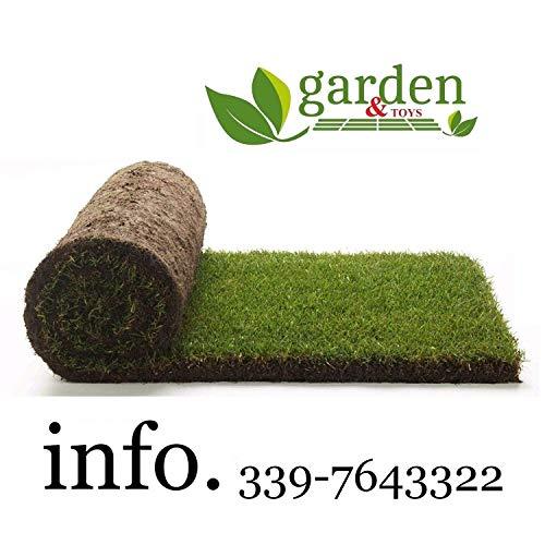 3 mq prato pronto a rotoli di 1^ scelta in erba naturale (6 rotolo)
