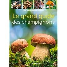 Le grand guide des champignons