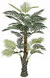 PASAMO 06989 Palme, Echtholzstamm, Kunstpflanze 170cm