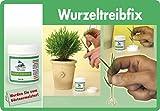 Captain Green Wurzeltreibfi x, weiß, 4.5 x 4.5 x 6 cm