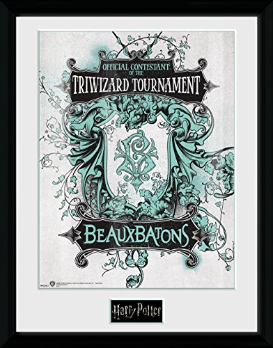 GB Eye Harry Potter-Triwizard Beaux Taktstöcke Gerahmter Kunstdruck, Mehrfarbig, 30x 40cm
