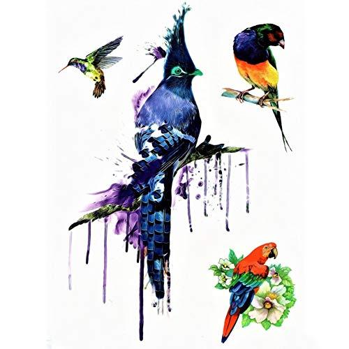 JUSTFOX - Temporäres Tattoo Kolibri Papagei Vogel Bunt Design Temporary Klebetattoo Körperkunst