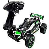 Aiya RC Cars Vehicle Climber Truck 2.4Ghz 2WD High Speed 1:20 Radio Remote Control Racing Cars Electric Fast Race Hobby Car Racing Monster Truck Climber Toy für Kids Boys Erwachsene,Green