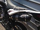 Auspuff Yamaha WR 125 R/X slip on