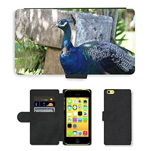 Just Mobile pour Hot Style Téléphone portable étui portefeuille en cuir PU avec fente pour carte//m00138377paon plumes Nature Oiseau Bleu//Apple iPhone 5C