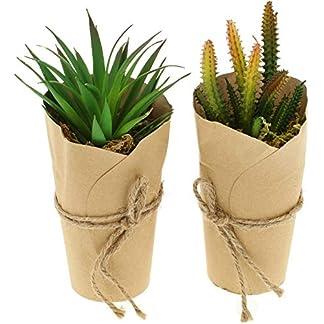 com-four® 2X Plantas Artificiales [la selección varía], Plantas Decorativas engañosamente Reales en jarrón de Papel, Plantas Artificiales para el hogar, jardín, balcón y Oficina (02 Piezas – 19-21cm)