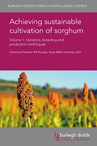 Achieving Sustainable Cultivation of Sorghum Volume 1: Genetics, Breeding and Production Techniques (Burleigh Dodds Series in Agricultural Science, Band 31)