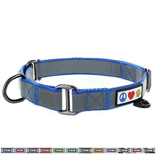 PAWTITAS Martingale Hundehalsband Welpenhalsband Reflektierendes Hundehalsband Trainingshalsband für Hunde Erziehungshalsband für Hunde Klein Hundehalsband Blau Hundehalsband -