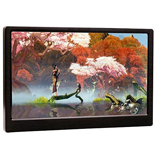 KKmoon Ultra Dünner Beweglicher IPS LCD Spiel Monitor Tragbare Bildschirm mit HDMI USB Hafen Standplatz 1080p Entschließung USB Angetrieben für PS4 Xbox ein Konsole PC Schreibtisch Laptop Kamera