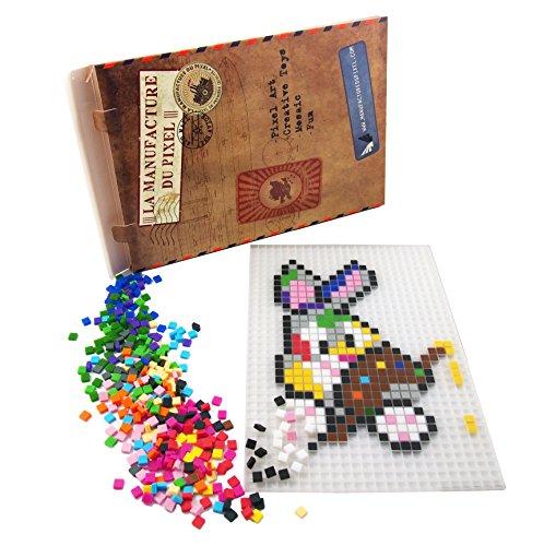 La Manufacture du Pixel – Pixel Handwerkskunst, Kreatives Hobby, Mosaik, Spaß! – Erstellen Sie Ihre Eigene Kunst – Zink Sammlung – Rahmen und 900 Pixel Set (Lichtdurchlässig)