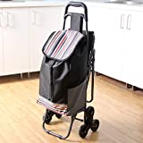 Panier d'achat pliable de grande capacité de 6 roues / léger idéal pour la mobilité Chariot d'escalade d'escalier facile à utiliser