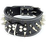 Leder Hunde Halsbänder für mittelgroße und große Hunde mit Nieten Stachel (45--55cm, schwarz)