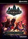 Pillars of Eternity Champion Edition [PC Code - Steam]