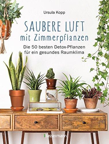 Saubere Luft mit Zimmerpflanzen: Die 50 besten Detox-Pflanzen für ein gesundes Raumklima. Basiert auf der NASA