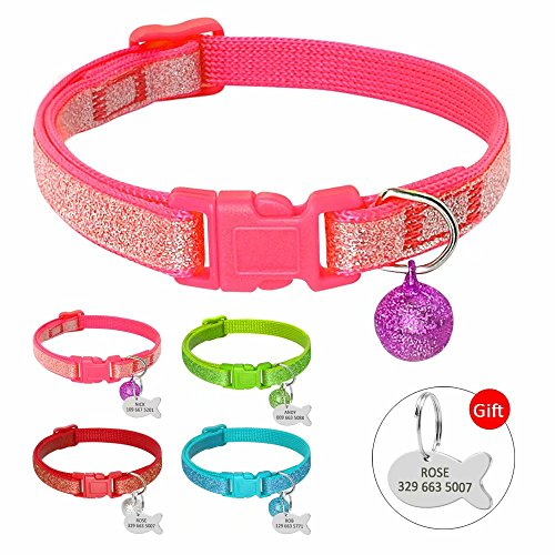 Berry Kitten Cat Breakaway Collars - Sparkle Custom Pet ID Dog Cat Collars - Personalized Engrave Kitten Cat ID Tags