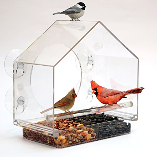 birds-i-view-window-bird-feeder